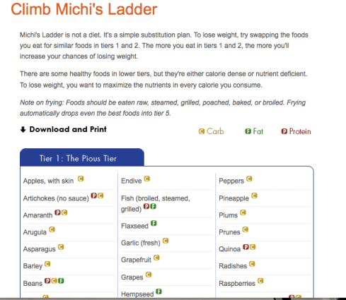 michi's ladder